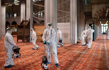 Istanbul disinfects mosques against COVID-19 ahead of reopening